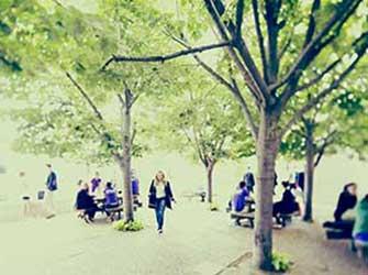 Les campus_335x250